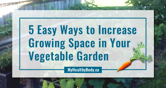 5 Easy Ways to Increase Your Vegetable Garden Growing Space
